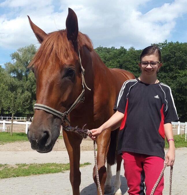 Unser neues Therapie-Pferd Don